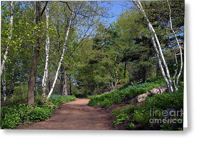 Chevalier Greeting Cards - Spiritual Path Greeting Card by Elizabeth Chevalier