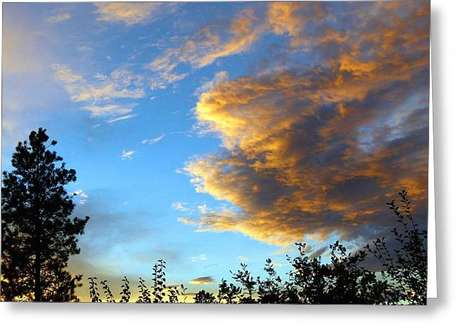 Dazzling Blue Greeting Cards - Splendid Summer Sunset Greeting Card by Will Borden