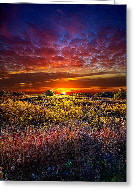 Geographic Greeting Cards - Splendiferous Greeting Card by Phil Koch