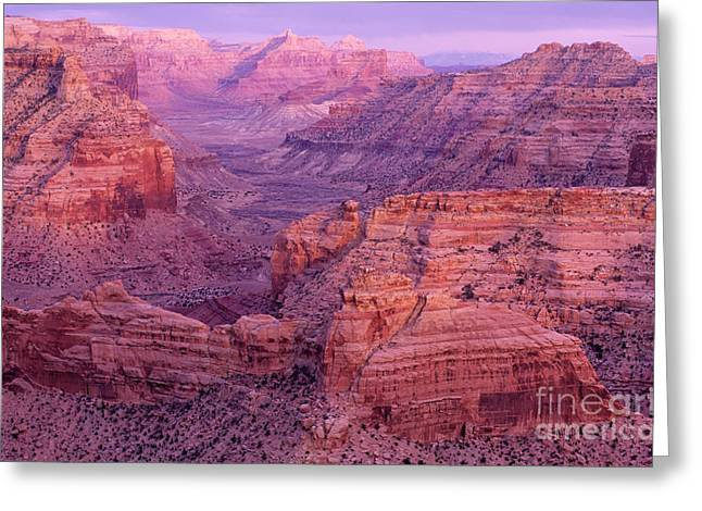 Sacred Earth Greeting Cards - Splendor Of Utah Greeting Card by Bob Christopher