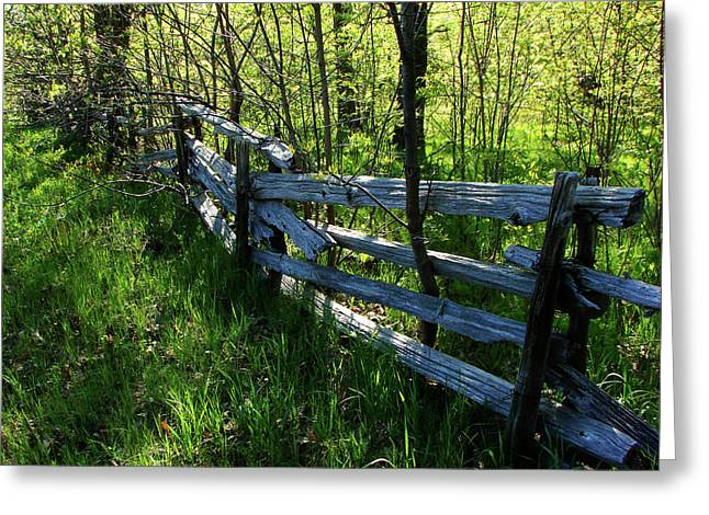 Split Rail Cedar Fence Greeting Card by Bruce Ritchie