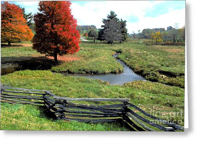 Split Rail Fence Greeting Cards - Split rail fence in Virginia Greeting Card by Carl Purcell