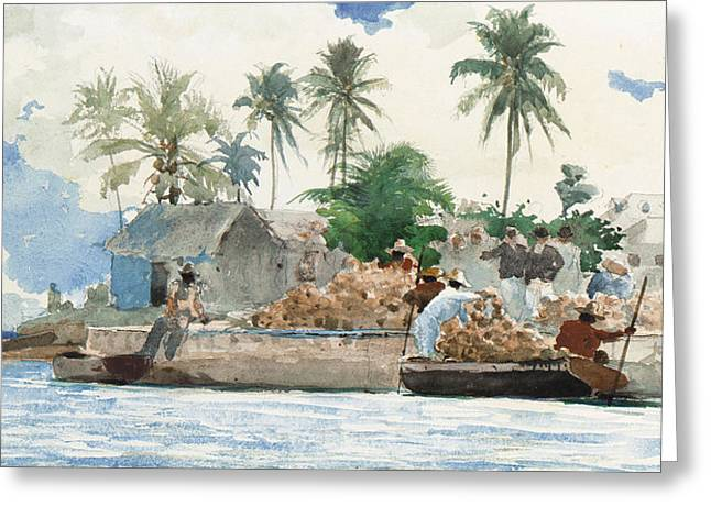 Maritime Paintings Greeting Cards - Sponge Fisherman in the Bahama Greeting Card by Winslow Homer