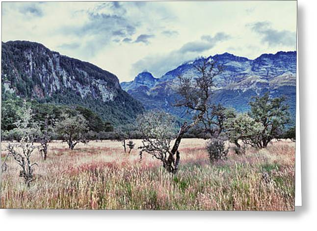 Eerie Greeting Cards - Spooky landscape Greeting Card by MotHaiBaPhoto Prints