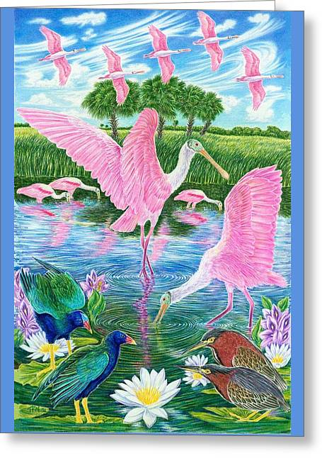 Spoonbill Heaven Greeting Card by Tim McCarthy