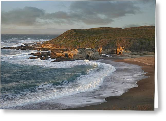 Ocean Shore Greeting Cards - Spooners Cove Montano De Oro State Park Greeting Card by Tim Fitzharris