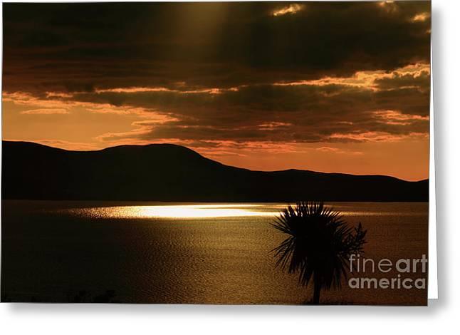 Sunset Prints Greeting Cards - Spotlight Bay Greeting Card by Aidan Moran