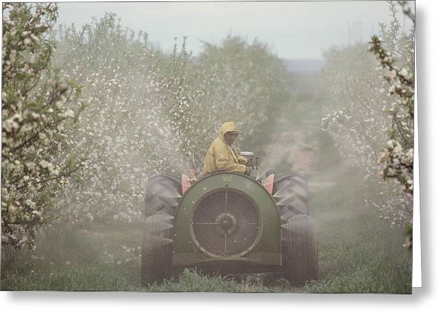Farmers And Farming Greeting Cards - Spraying Apple Trees From A Machine Greeting Card by Sisse Brimberg