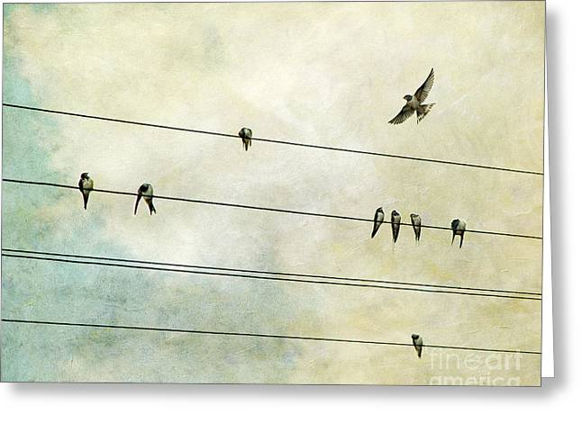 Sparrow Greeting Cards - Spread My Wings And Fly Greeting Card by Violet Gray