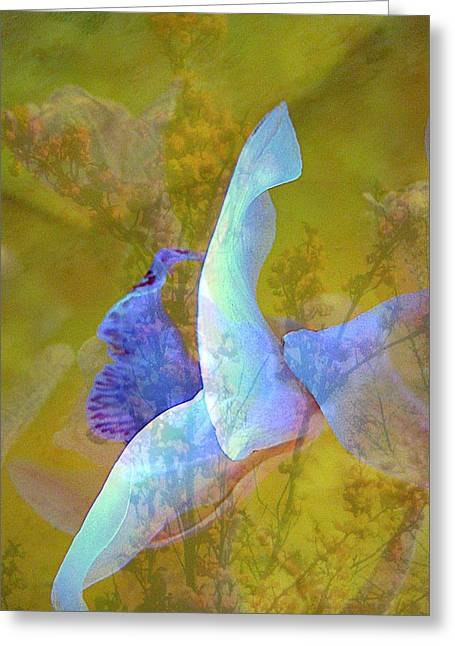 Mauve Greeting Cards - Spread to the Wind Greeting Card by Shirley Sirois