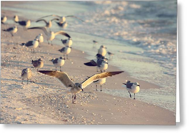 Kim Photographs Greeting Cards - Spread Your Wings Greeting Card by Kim Hojnacki