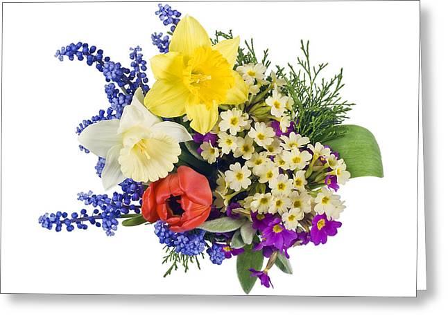 Flower Express Greeting Cards - Sprig mix background Greeting Card by Aleksandr Volkov