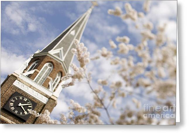 Charlotte Nc Photography Greeting Cards - Spring at Belmont Abbey College Greeting Card by Patrick Schneider