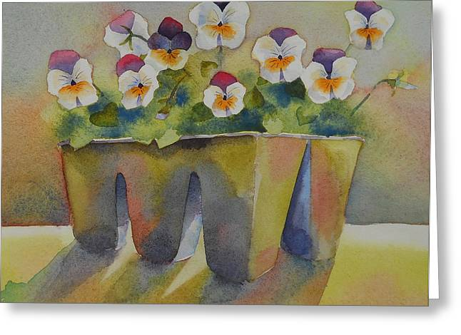 Johnny Jump Up Pansy Greeting Cards - Spring Beauties Greeting Card by Amy Householder