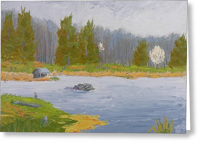 Nature Center Pond Paintings Greeting Cards - Spring Blossoms Beaver Pond Greeting Card by Robert P Hedden