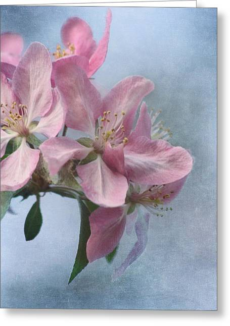 Spring Blossoms For The Cure Greeting Card by Kim Hojnacki