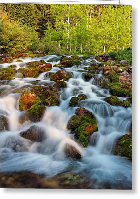 Pouring Greeting Cards - Spring Cascade Greeting Card by Leland D Howard
