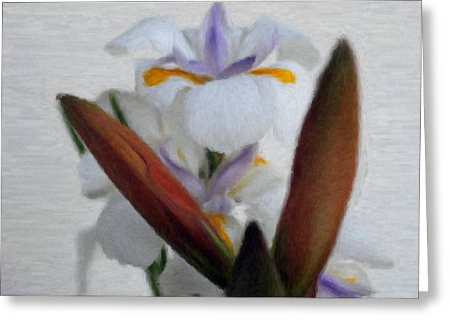 Florida Flowers Mixed Media Greeting Cards - Spring Colors 5 Greeting Card by Evelyn Patrick