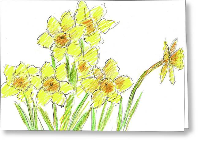 Journal Drawings Greeting Cards - Spring Daffodils Greeting Card by Cathie Richardson