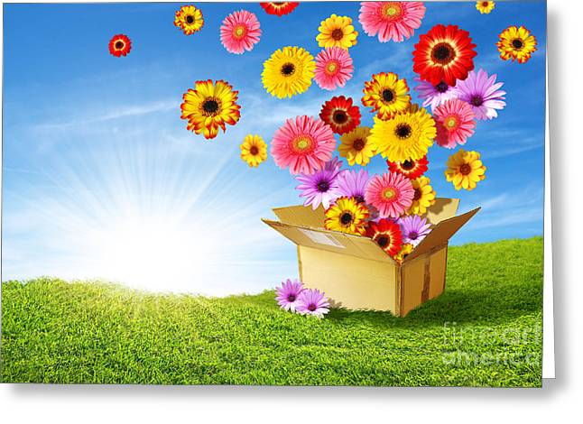 Spring Delivery Greeting Card by Carlos Caetano