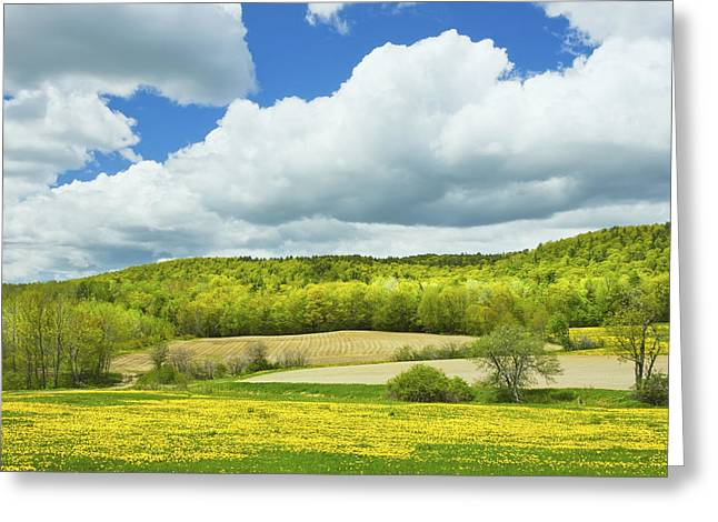Maine Spring Greeting Cards - Spring Farm Landscape And Blue Sky In Maine Greeting Card by Keith Webber Jr
