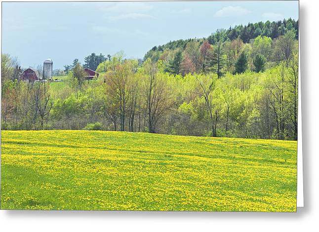 Maine Agriculture Greeting Cards - Spring Farm Landscape With Dandelion Bloom in Maine Photograph Greeting Card by Keith Webber Jr