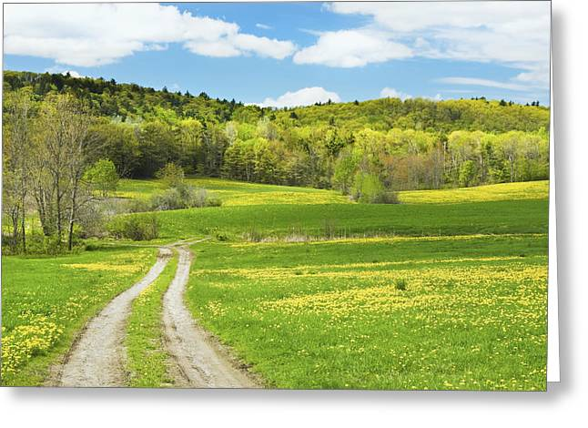 Rural Maine Roads Photographs Greeting Cards - Spring Farm Landscape With Dirt Road in Maine Greeting Card by Keith Webber Jr