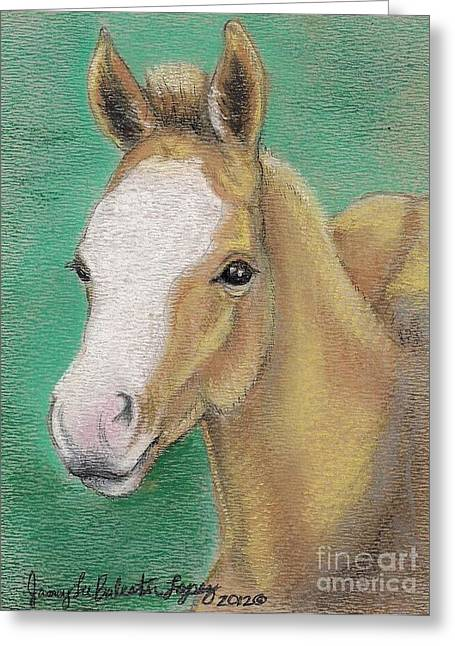 Equine Pastels Pastels Greeting Cards - Spring Foal Greeting Card by Jamey Balester