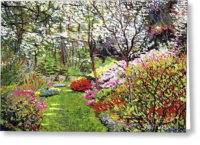 Most Viewed Greeting Cards - Spring Forest Vision Greeting Card by David Lloyd Glover