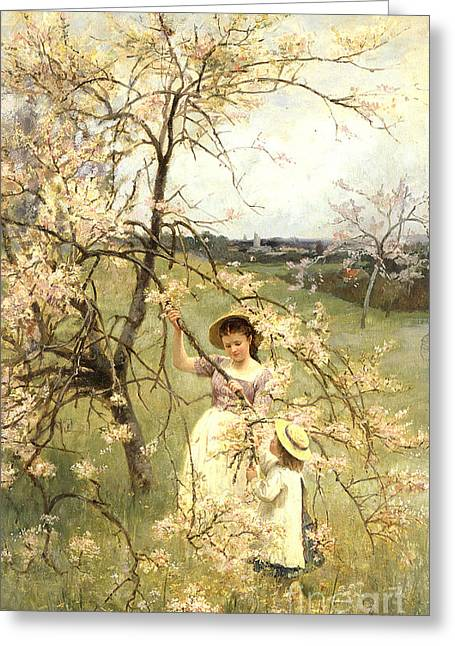 Cherry Blossoms Paintings Greeting Cards - Spring Greeting Card by Henry George Todd