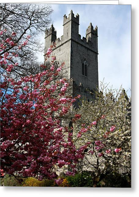 Limerick Greeting Cards - Spring in medieval Limerick Ireland Greeting Card by Pierre Leclerc Photography