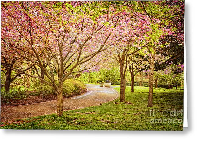 Spring In The Park Greeting Card by Cheryl Davis