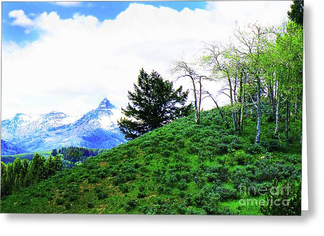 Montana Landscapes Photographs Greeting Cards - Spring In The Rockies Greeting Card by Terril Heilman