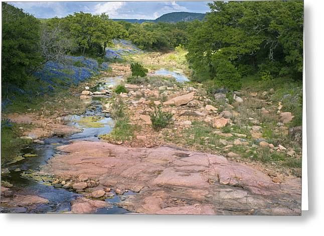 Llano Greeting Cards - Spring in the Texas Hill Country Greeting Card by Paul Huchton