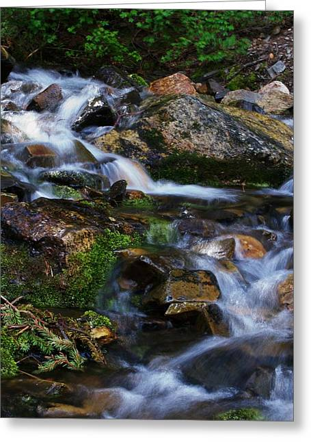 Water Framed Prints Greeting Cards - Spring Greeting Card by Kevin Bone