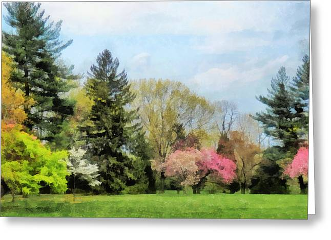Flowering Trees Greeting Cards - Spring Landscape Greeting Card by Susan Savad