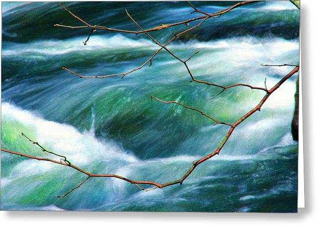 Babbling Greeting Cards - Spring Limbs Greeting Card by Mike Flynn