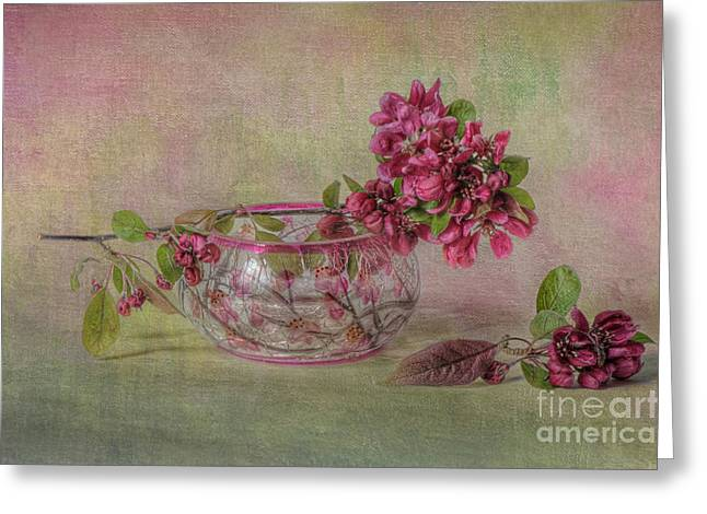 Pink Flower Branch Greeting Cards - Spring Moments Greeting Card by Jacky Parker