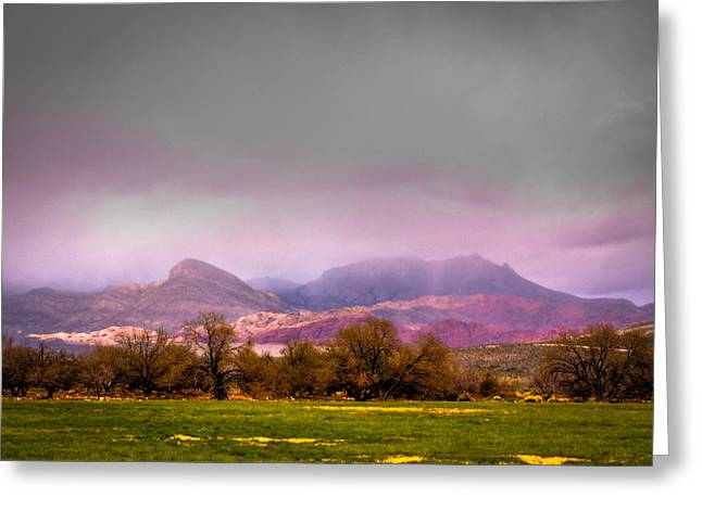 Spring Mountain Ranch In Red Rock Canyon Greeting Card by David Patterson