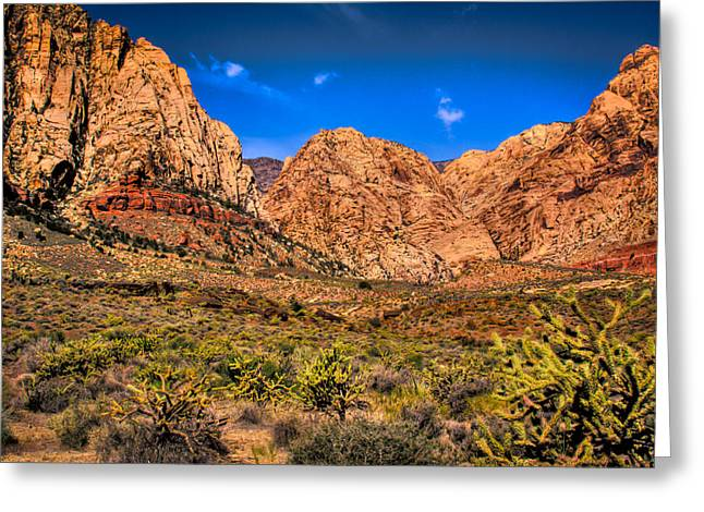 Iron Oxide Greeting Cards - Spring Mountain Ranch in Red Rock Canyon II Greeting Card by David Patterson