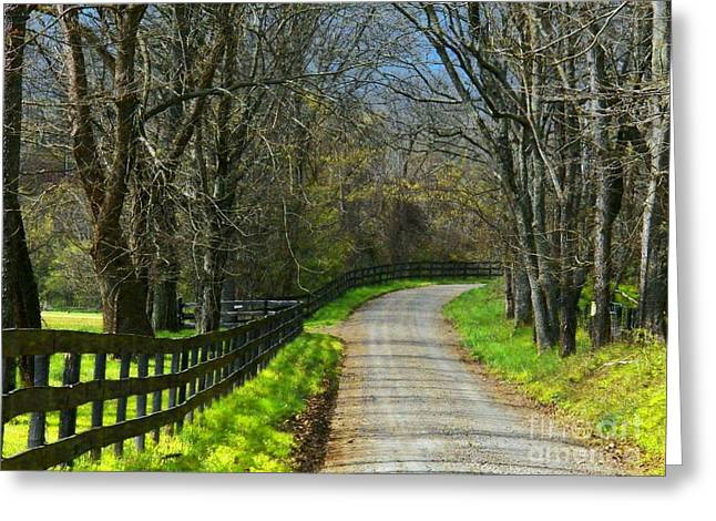 Northern Virginia Greeting Cards - Spring Road Greeting Card by Joyce Kimble Smith
