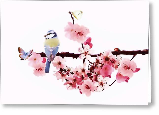 Pink Blossoms Digital Greeting Cards - Spring Greeting Card by Sharon Lisa Clarke
