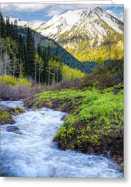 Runoff Greeting Cards - Spring Snow Melt Wasatch Mountains Utah Greeting Card by Utah Images
