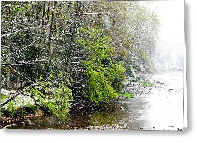 Spring Snow Williams River Greeting Card by Thomas R Fletcher