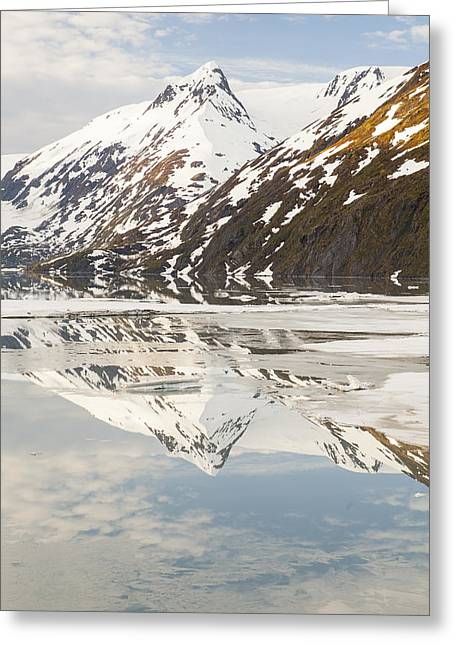 Portage Greeting Cards - Spring Time on a Mountain Lake Greeting Card by Tim Grams