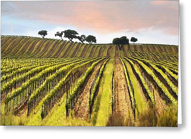California Vineyard Greeting Cards - Spring Vineyard Greeting Card by Sharon Foster
