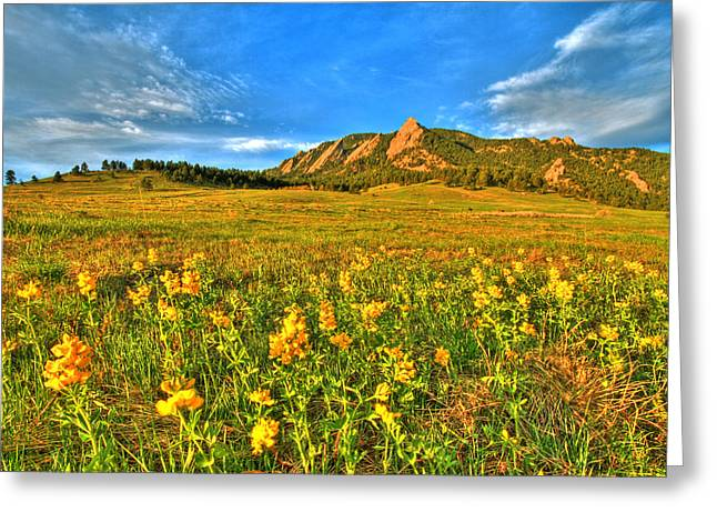 Cu Boulder Greeting Cards - Spring Vision Greeting Card by Scott Mahon