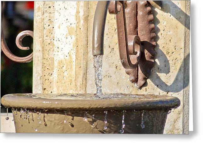 Flowing Wells Greeting Cards - Spring water Greeting Card by Dennis Dugan