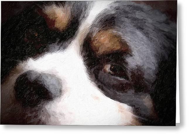 Tired Dog Greeting Cards - Springer Spaniel Greeting Card by Tom Mc Nemar