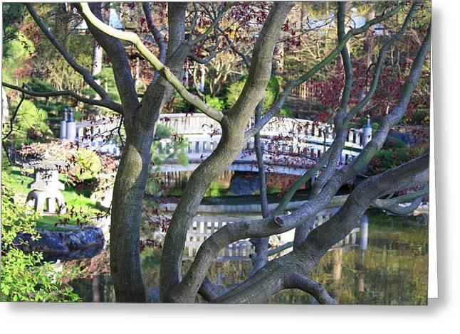 Pond In Park Greeting Cards - Springtime Bridge through Japanese Maple Tree Greeting Card by Carol Groenen